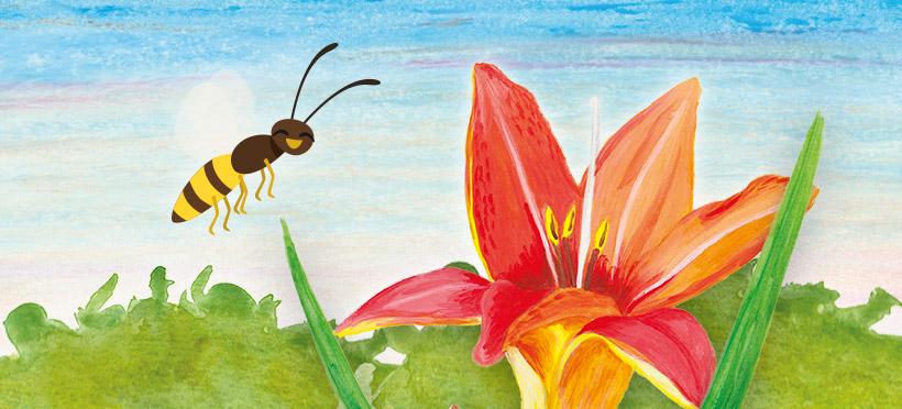 Les guêpes, des insectes injustement mal aimés