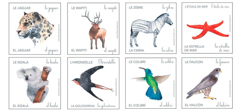 Apprendre le nom des animaux : en espagnol !