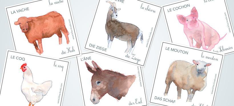 Les animaux de la ferme : en allemand ! – Partie 1