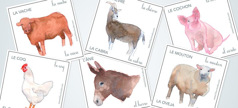 Les animaux de la ferme : en espagnol ! – Partie 1